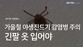"""가을철 야생진드기 감염병 주의...""""긴팔 옷 …"""