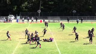 TwinSportsTV: Stockbridge Generals 8U vs North Dekalb Chargers 8U HIGHLIGHT