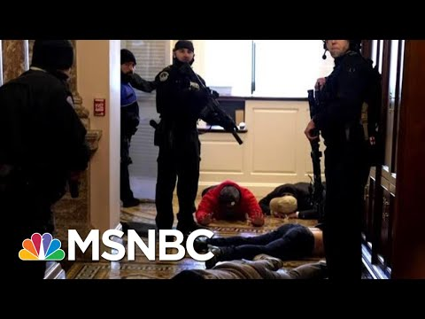 Former Sergeant At Arms: 'There Was A Freaking Failure' Of Capitol Law Enforcement | MTP Daily