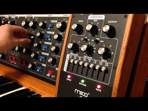 Moog moogerfooger murf groove on minimoog OS