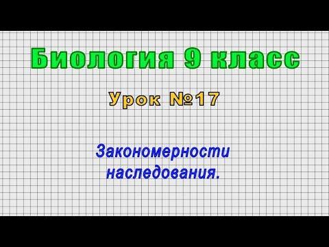 Биология 9 класс (Урок№17 - Закономерности наследования.)