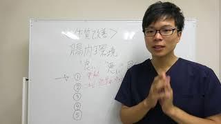 【腸内環境×改善】腸内環境、良し悪しの見分け方 thumbnail