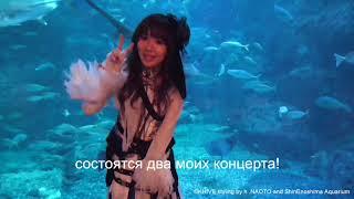 yucat (Japan) – Hinode Power Japan Video Message
