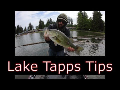 Lake Tapps Bass Fishing Tips And Techniques