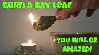 Burn A Bay Leaf in Your House.. The Reason? You'll Be Amazed !
