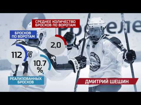 Лучшие дебютанты МХЛ. Дмитрий Шешин (Стальные Лисы)