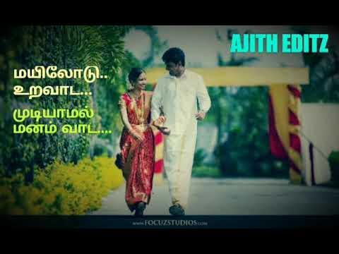 Sakkarakatti Sakkarakatti Santhana Petti/Mayilodu Uravada Mudiyamal/Tamil Love WhatsApp Status!