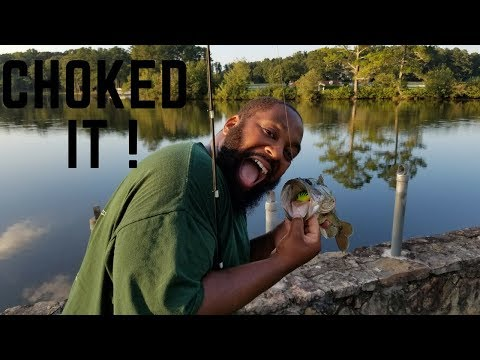 Georgia Bass Fishing: 2 Secret Honey Holes!!