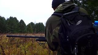 Kral Arms M155. Несостоявшаяся пристрелка.