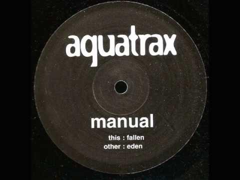 Manual (2)-Fallen