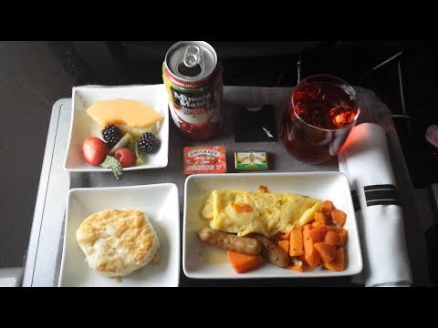 American Airlines First Class | Review | Dallas, TX (DFW) - Santa Ana, CA (SNA) | September (2017)