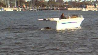 "24"" Tri-hull boat"