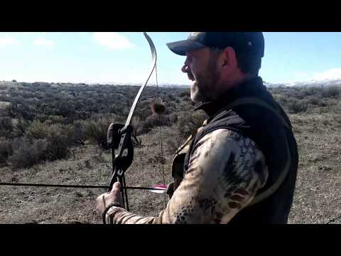 RABBIT HUNTING WITH A RECURVE BOW IS A RIOT!!!