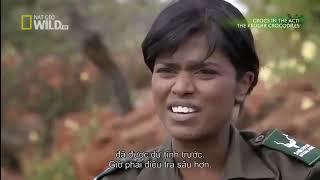 National Geographic Documentary   Monster Crocodile New Documentary HD 2017