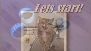 1 видео)Самый лучший и быстрый способ сделать домик для кошек,котят