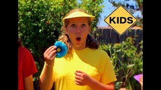 Summer Accessories! Learn English Colors with Sign Post Kids!