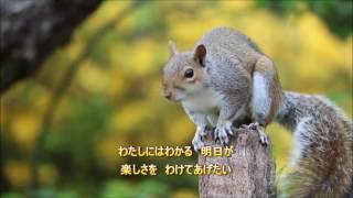 一緒に唄って下さいね~☆ お友達のlenoさんがカラオケ音源作って下さい...
