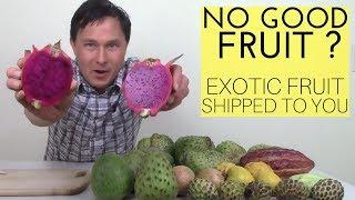 No Good Fruit? Exotic Fruit Shipped to You - Soursop &  More
