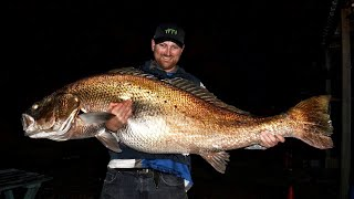45.8kg Jewfish Silver mulloway. Yes you read that correctly!