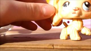 LPS DIY: How the remove Paint, Nail Polish, Dirt, and prevent rust from getting on your LPS!