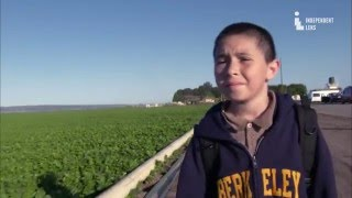 Video Independent Lens | East of Salinas | Update: Jose and Oscar | PBS download MP3, 3GP, MP4, WEBM, AVI, FLV November 2017