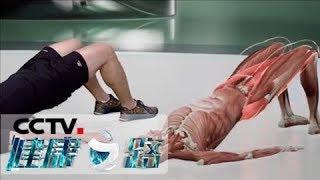 《健康之路》 20200131 再不补就晚了(一)| CCTV科教
