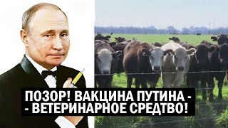 ПОЗОР - Вакцина Путина оказалась ВЕТЕРИНАРНЫМ средством - новости России, политика