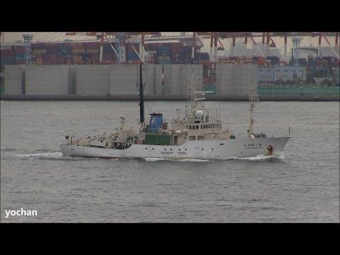 Research vessel: KAIYO MARU No.3 (Built: 1982 IMO: 8130265)