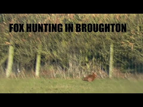 Fox Hunting In Broughton