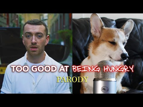 Dog Sings Sam Smith's Too Good at Goodbyes - HILARIOUS MUST WATCH!!!