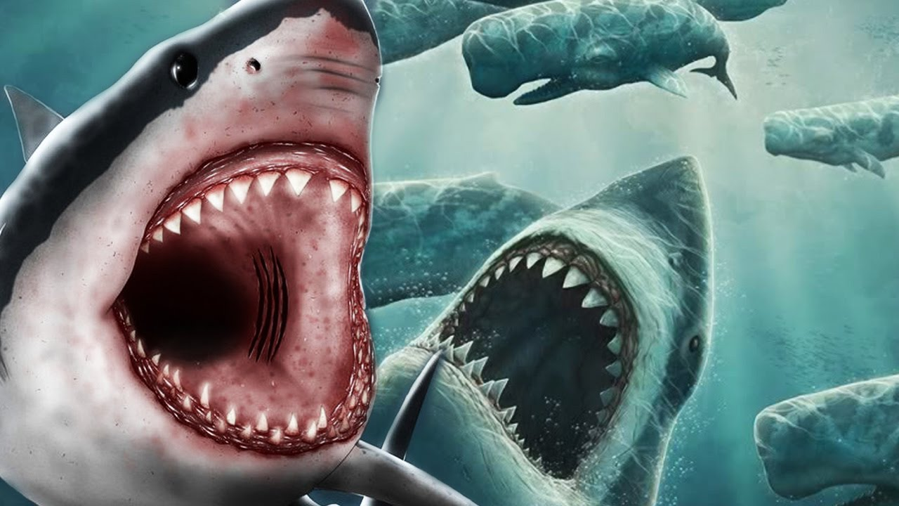 megalodon shark movie - 1280×720