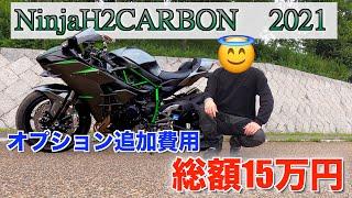 NinjaH2CARBONにつけたオプションを一挙大公開!!