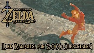 Link Ragdolls, for 2,000 Subscribers!