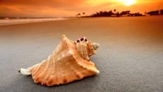 Pascal Dubois - Beachdancer (Spheric Dream Cut)