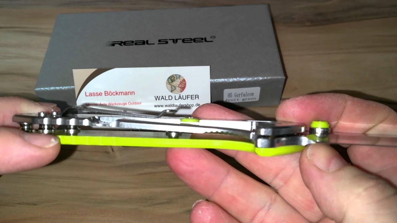 Real Steel H5 Gerfalcon