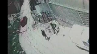 Inhumana: pareja botó el cuerpo de bebé como si fuera basura