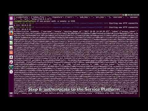 Network Service Deployment in the SONATA 3.0 Platform