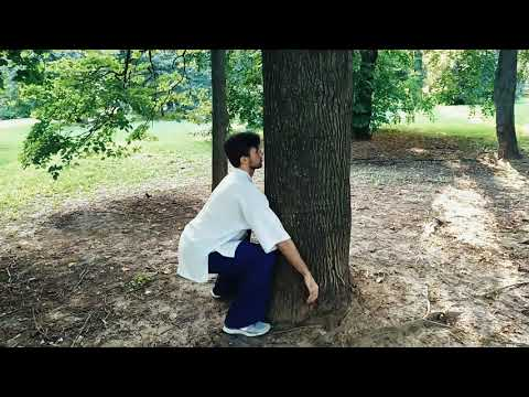 Цигун. Упражнение для здоровья позвоночника и расслабления поясницы.