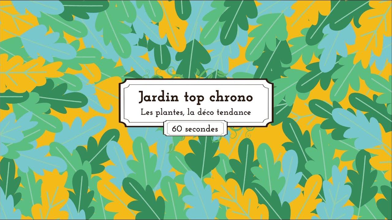 Jardin top chrono épisode 1 Les plantes la déco tendance