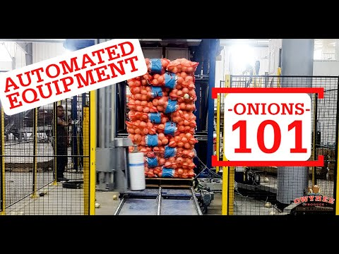 Onions 101- Automated Equipment