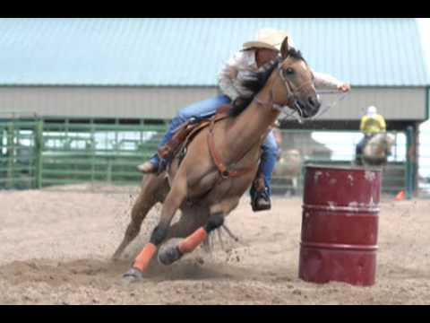 Download 1383 Women in the Rodeo