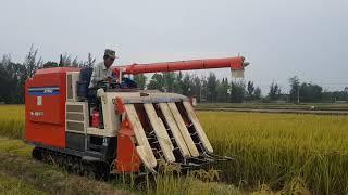 OMG Máy Cắt Lúa Siêu Nhanh Đã Về Với Buôn Làng Anh R1-551