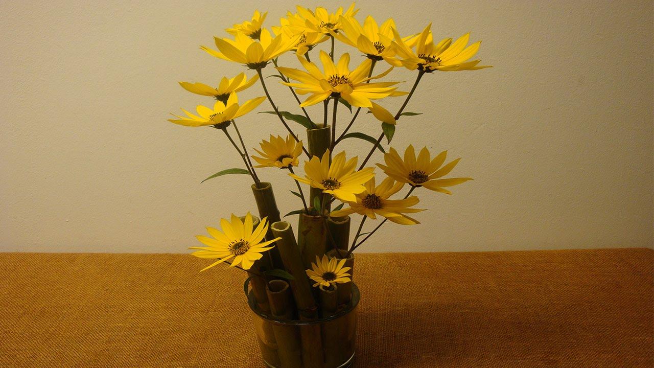 Tischdeko, Raumdekoration mit Blumen ❁ Deko Ideen mit Flora-Shop ...