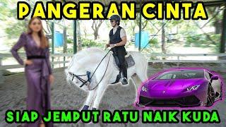 Pangeran Cinta Siap Jemput Ratu Naik Kuda 7M Tuker Lambo...