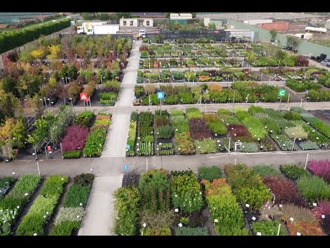 Plantmark Werribee Whole Plant Nursery Tour