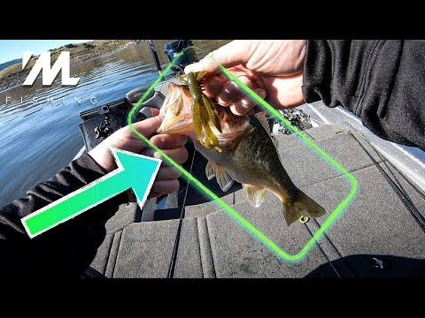 Fishing Off Shore Rock Piles For BIG WINTER BASS!  (Carolina Rig Fishing For Bass)