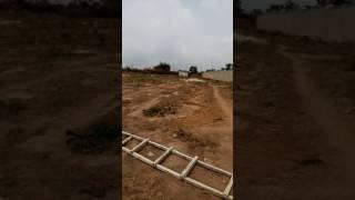 Video Royal Haven Garden Agbowa Ikorodu Lagos - Dry Land N800k/plot download MP3, 3GP, MP4, WEBM, AVI, FLV September 2018
