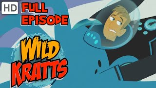 Wild Kratts - Whale of a Squid (HD - Full Episode)