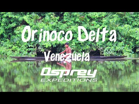 Orinoco Delta with Osprey Expeditions