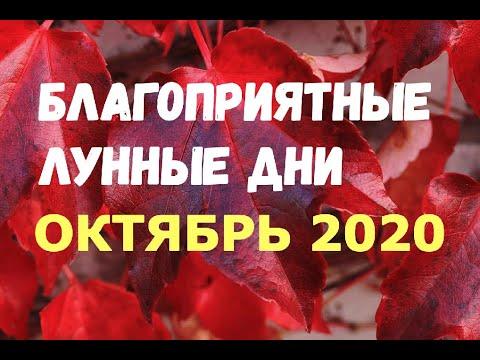 Лунный календарь на октябрь 2020/В КАКИЕ ДНИ УДАЧА ШАГАЕТ РЯДОМ